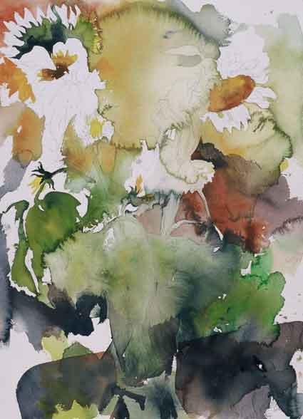 Wet-flower-white-sunflowers