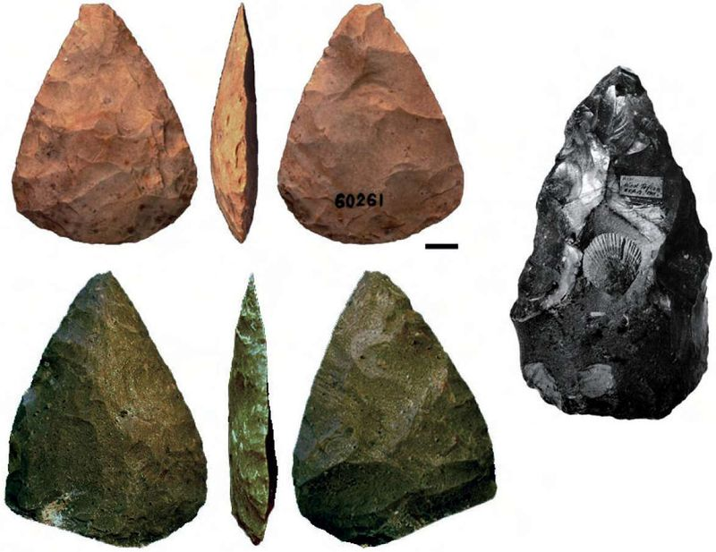 Neanderthaltools