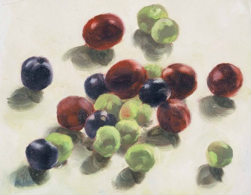 Green red purple prunes
