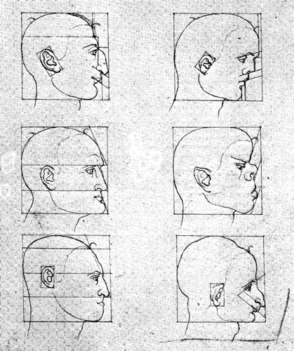 6_profilograph-durer-heads-original